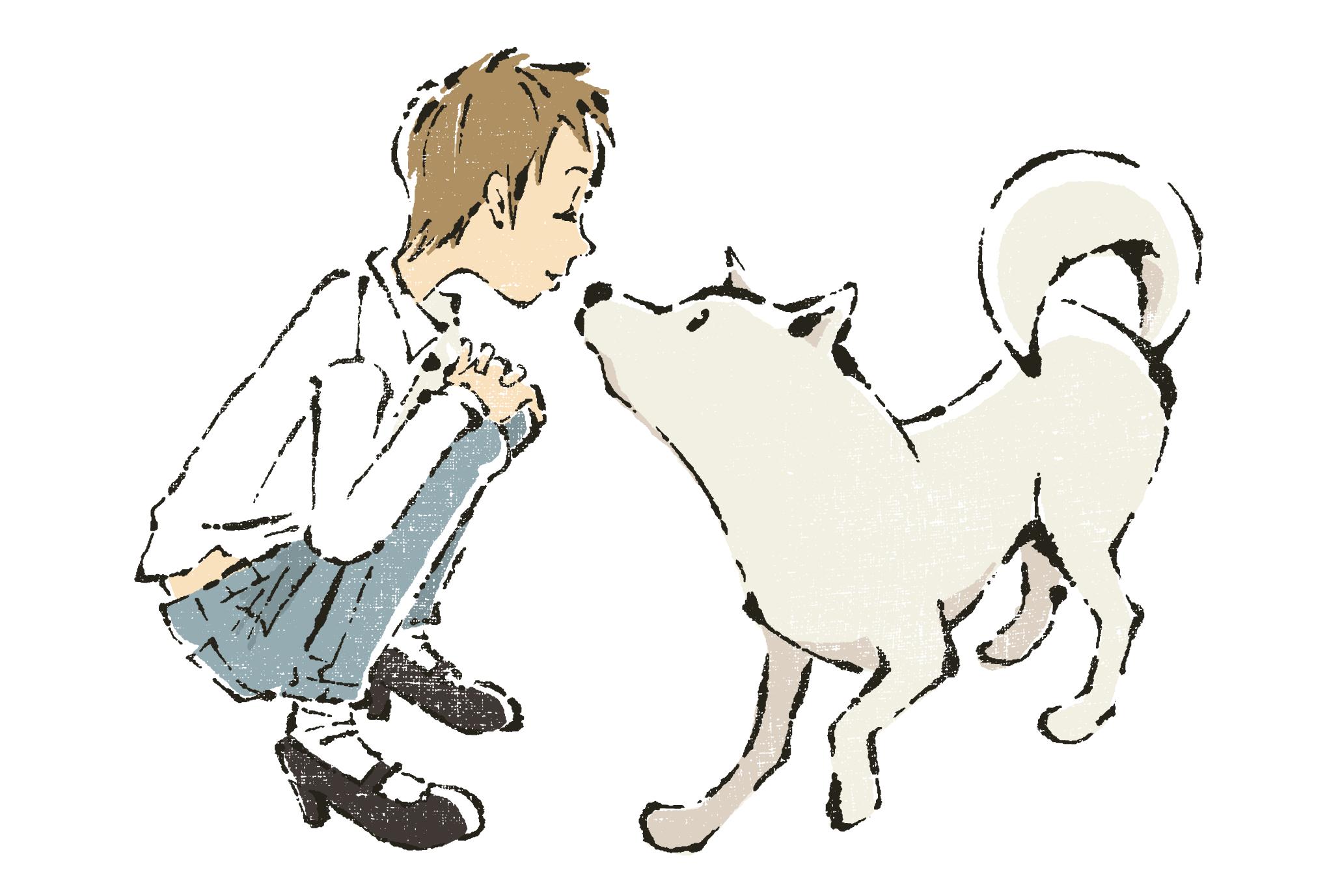2018年賀状09-1:White dog / redraw 1のダウンロード画像