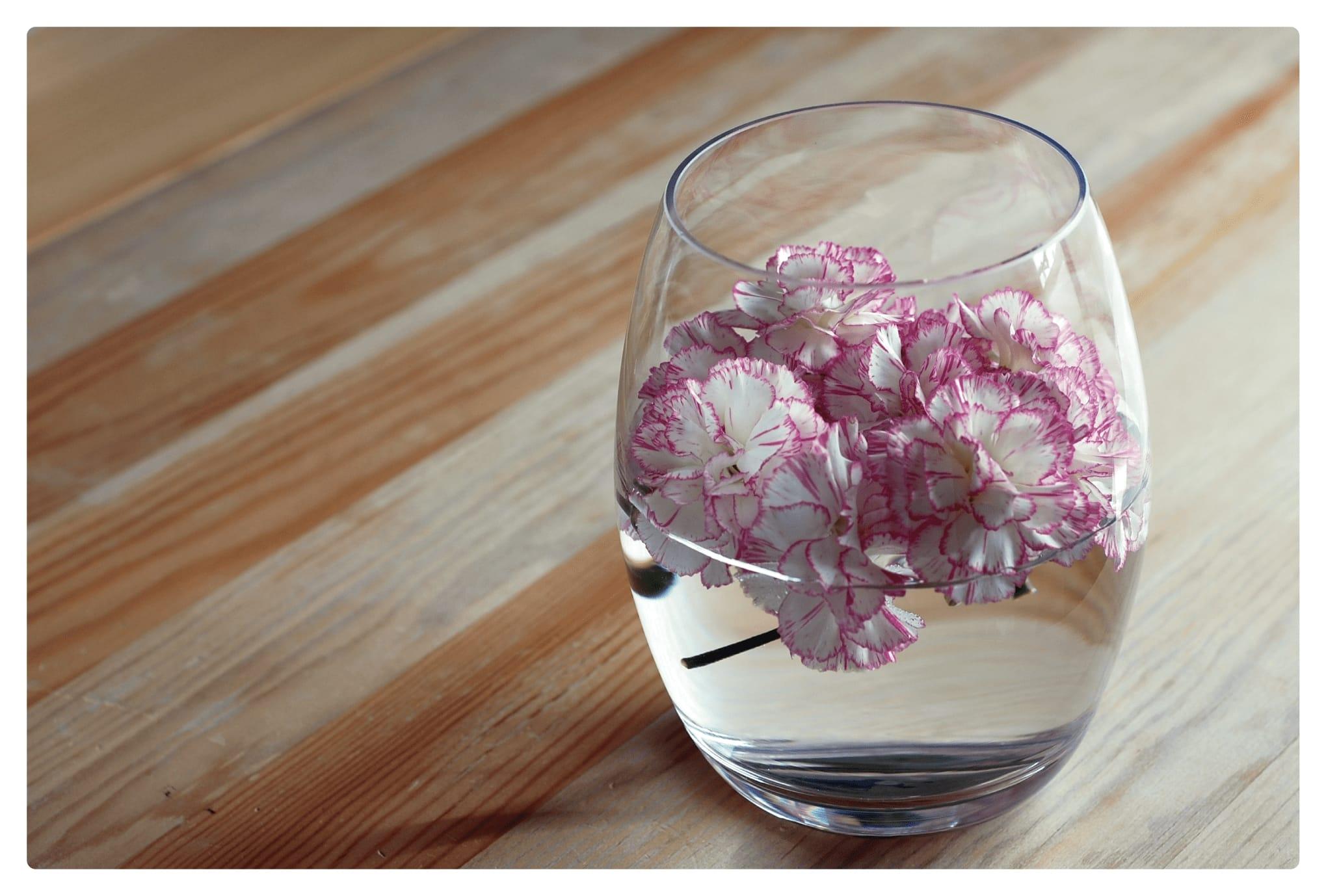 ポストカード34:Carnationのダウンロード画像