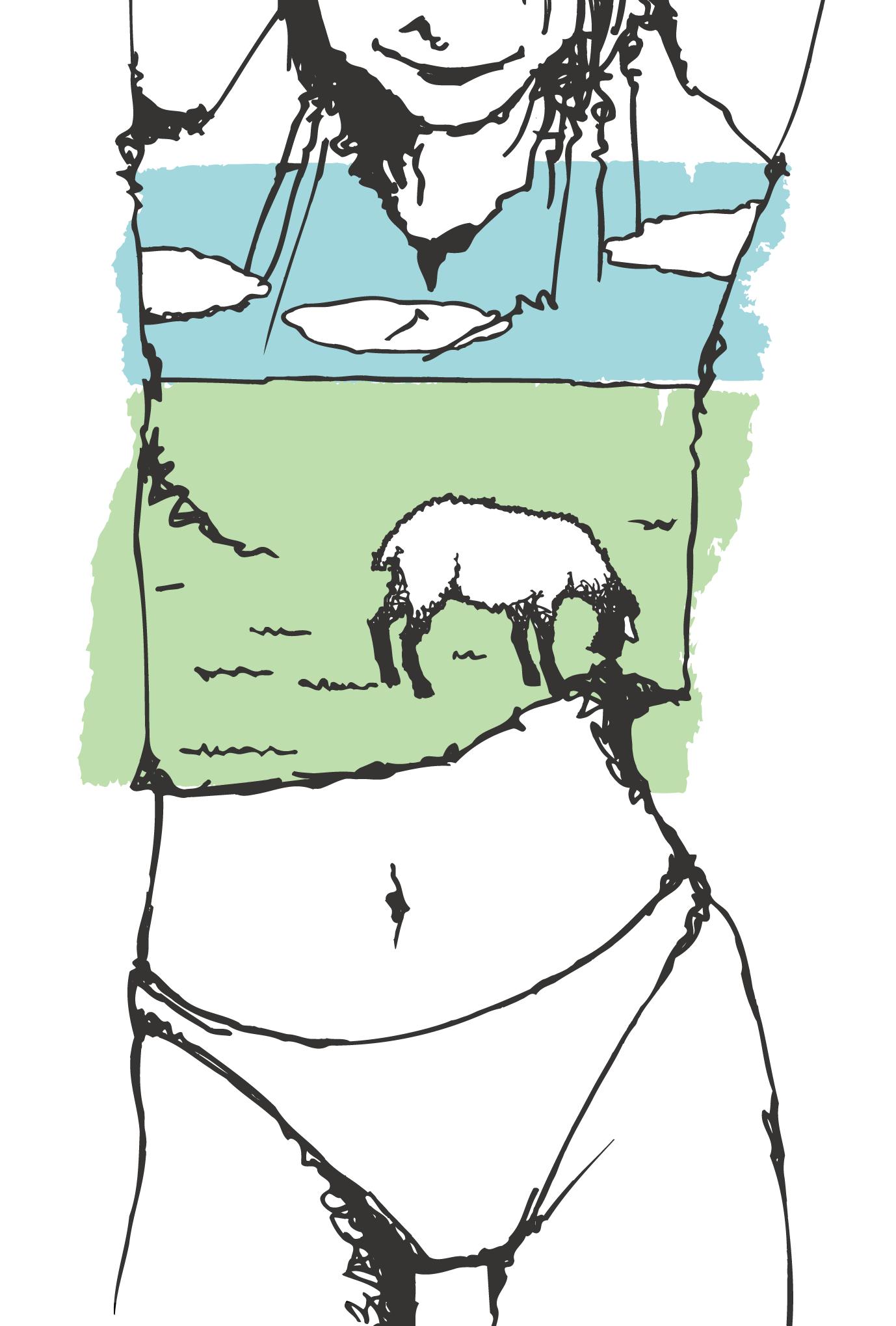 サマーカード57:Sheep in TEEのダウンロード画像